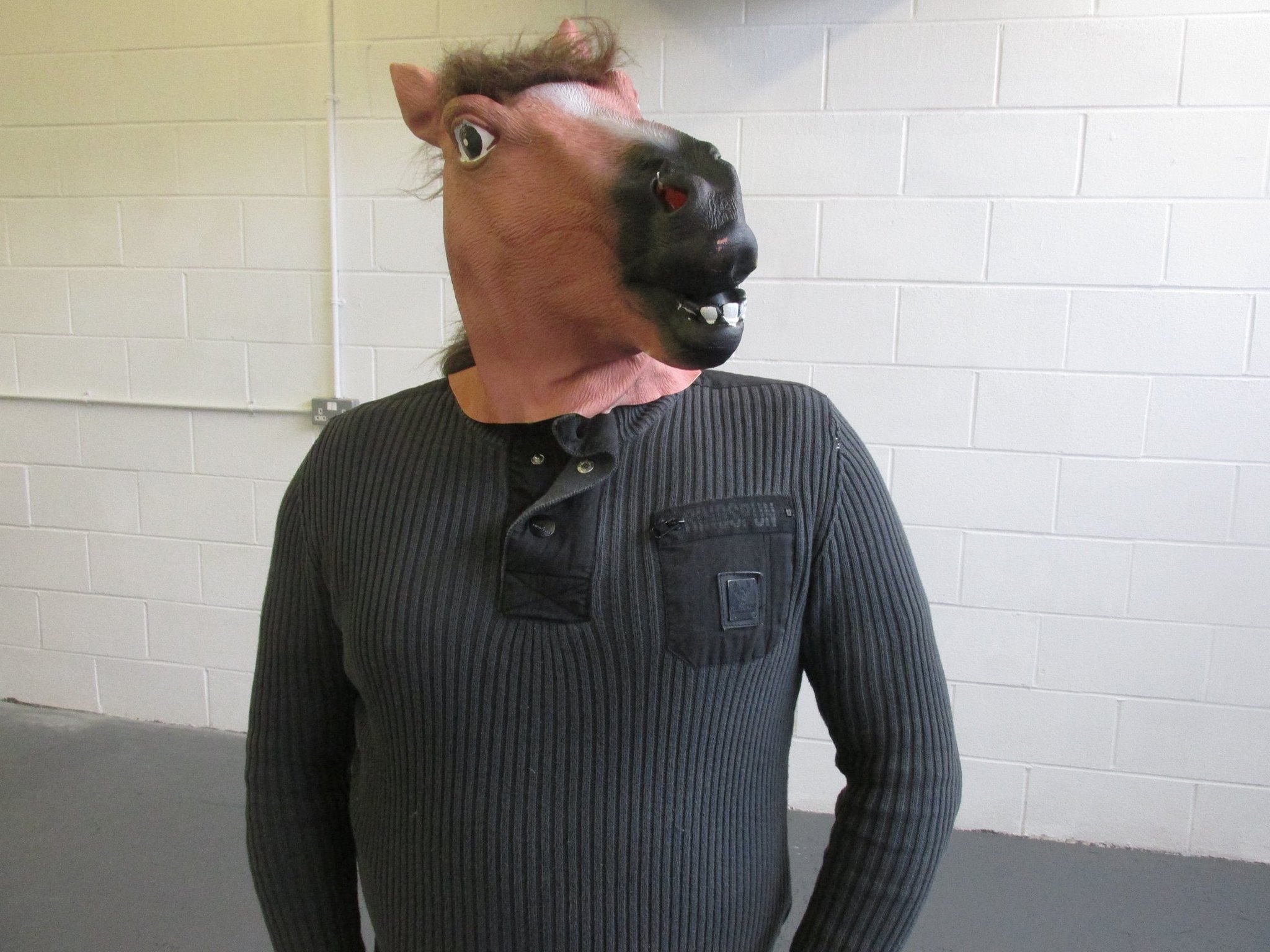 MrHorsesHeadProfile